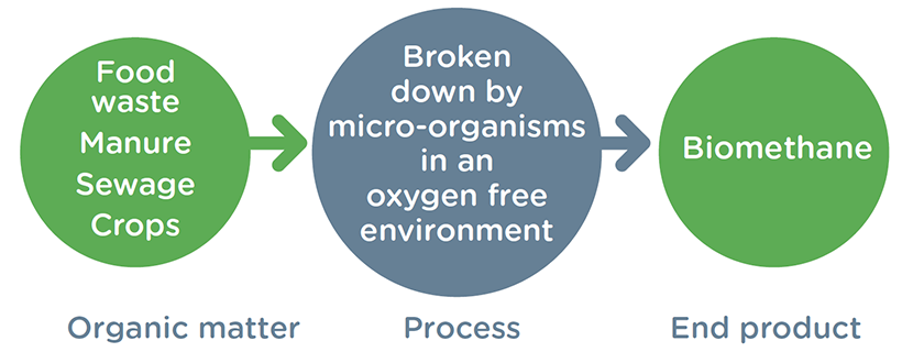 A diagram showing the biomethane process. Organic matter is broken down by micro-organisms and this becomes the end product, Biomethane.